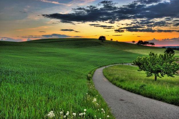 Evening Glory by John Langley