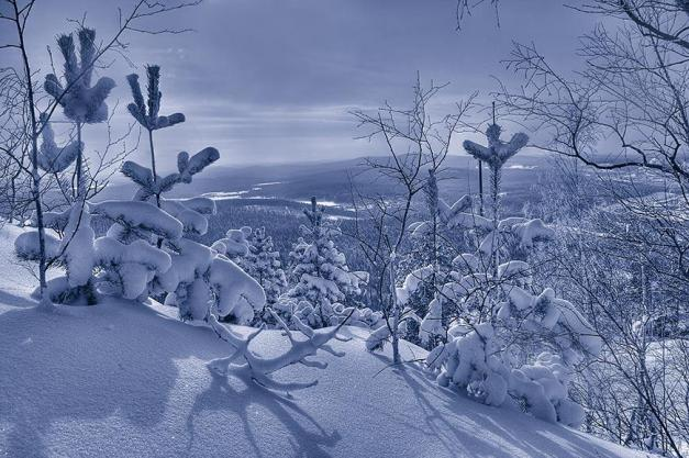 by Eugene Dudarev